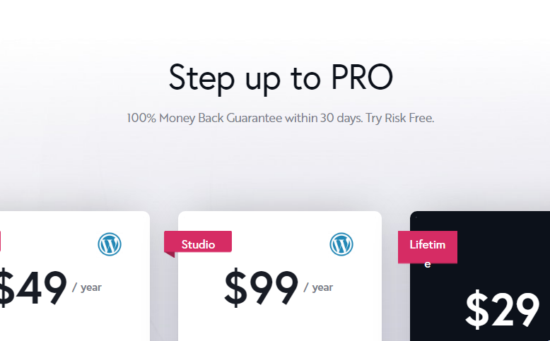 Brizy Pro Nulled