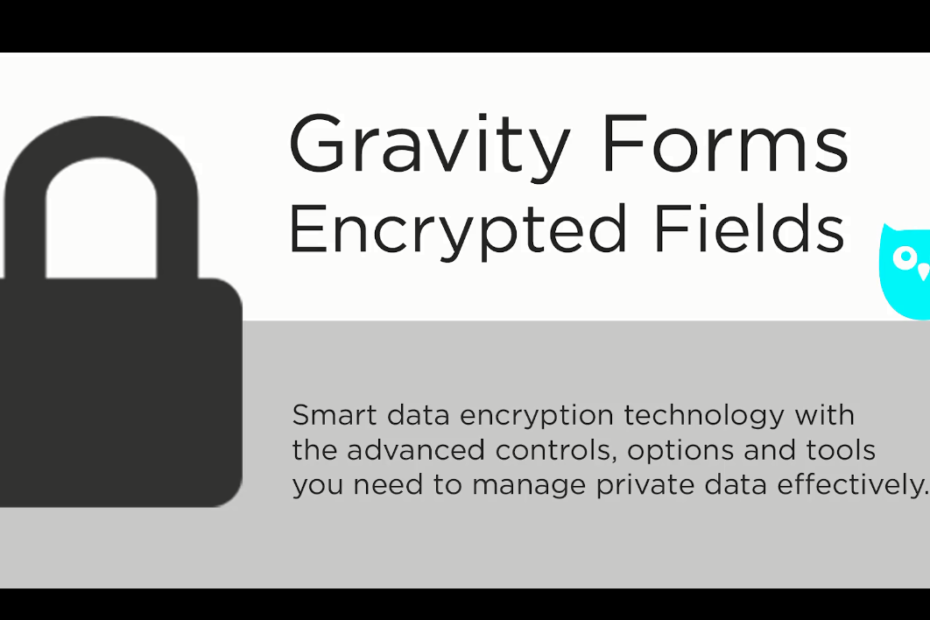 Gravity Forms Encrypted Fields Nulled